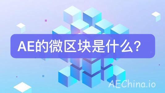 [刘少讲AE] AE的微区块是什么? 科普 第1张